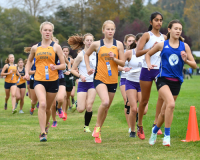 Gallery: Girls Cross Country Skagit County Meet